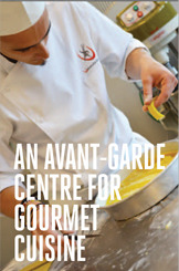 Cuisine Courses for Professionals and Foodies